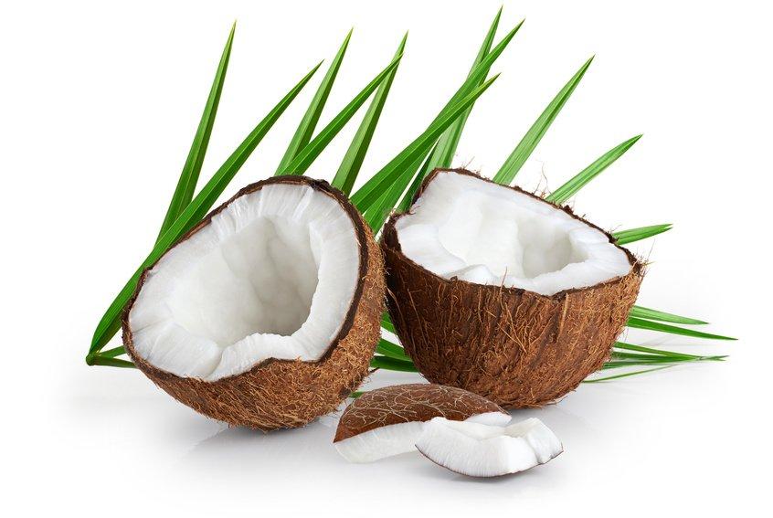Dentima-Kraków-olej kokosowy kontra próchnica zębów